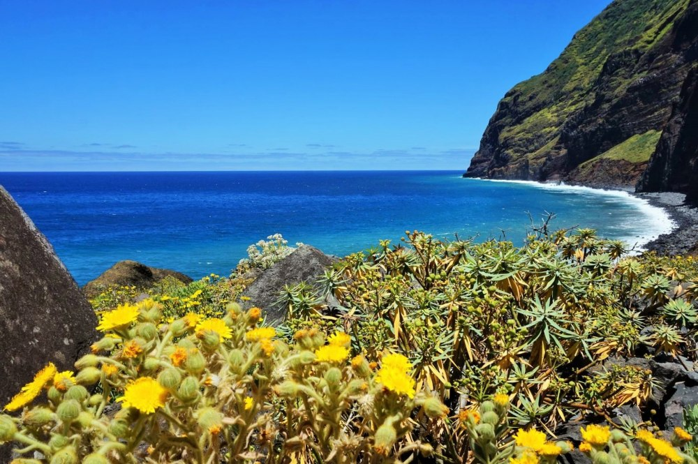 """Почивка Остров Мадейра-островът на цветята, полети от Барселона - Остров Мадейра – райско кътче, където ще пожелаете да останете завинаги.. Естествената му красота, субтропичния климат, прочутото вино с едноименната марка """"Мадейра"""", уникалната флора и фауна ще Ви пленят! Той е идеалното място за тези, които обичат спокойствието и тишината, и по-специално любителите на природата."""